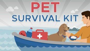 Pet Survival Kit – Fiinal
