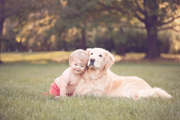 baby with golden retriever