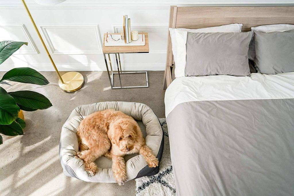 BarksBar Snuggly Sleeper Dog 2