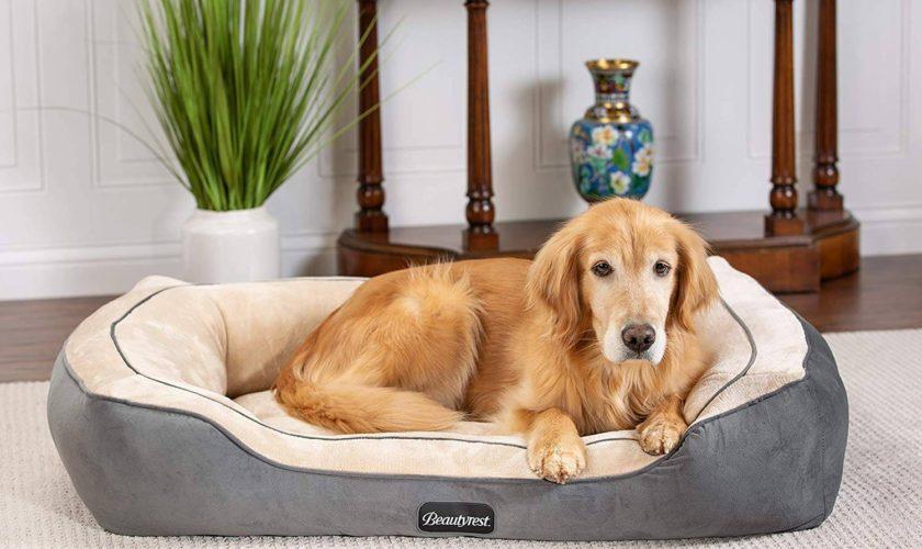Beautyrest Cozy Cuddler Dog
