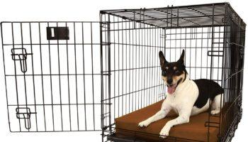 Big Barker Crate Dog