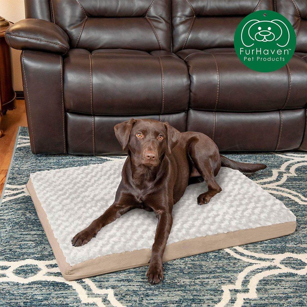 Furhaven Pet Dog Bed Orthopedic Dog