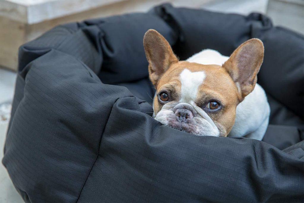 K9 ballistics round dog bed deep den small