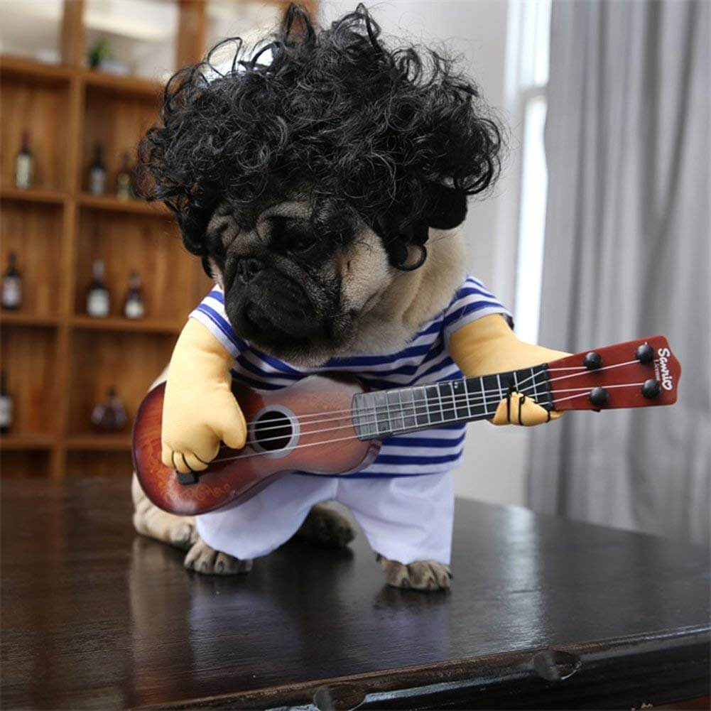 dog guitar costume 3