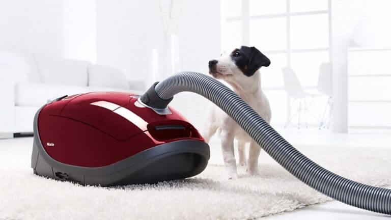 Small dog red vacuum
