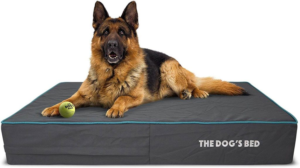 The Dogs Bed Orthopedic Large