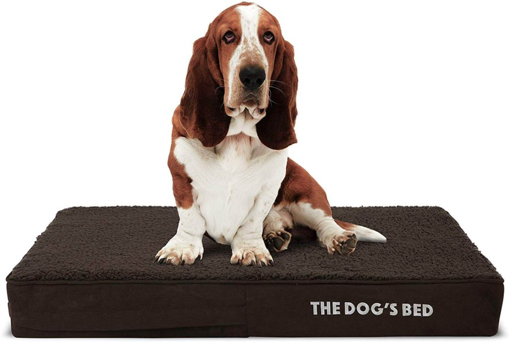 The Dogs Bed Orthopedic Medium