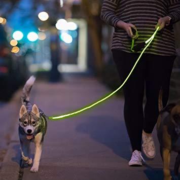 Dog Walking in Dark Neon Leash
