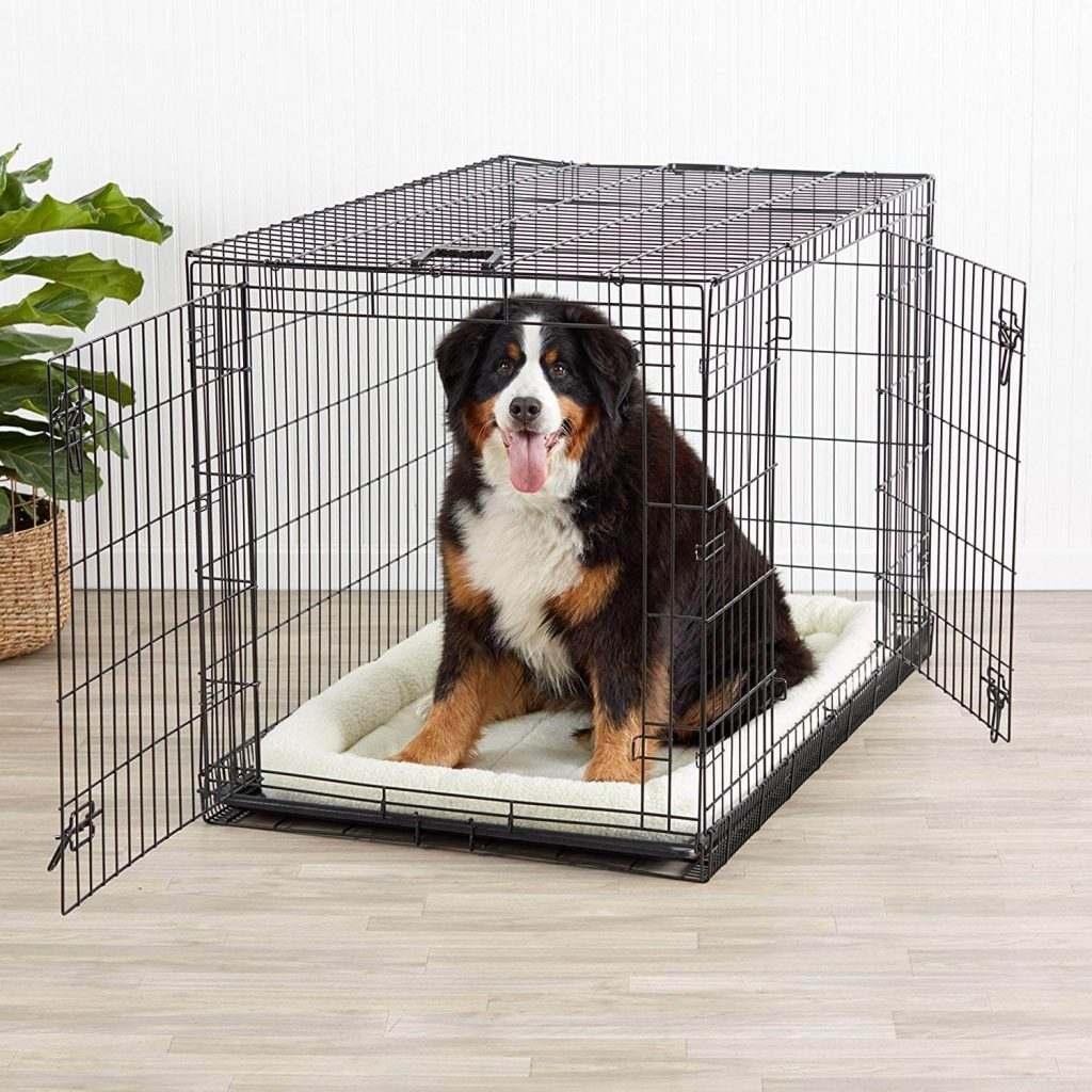 AmazonBasics Double Door With Dog