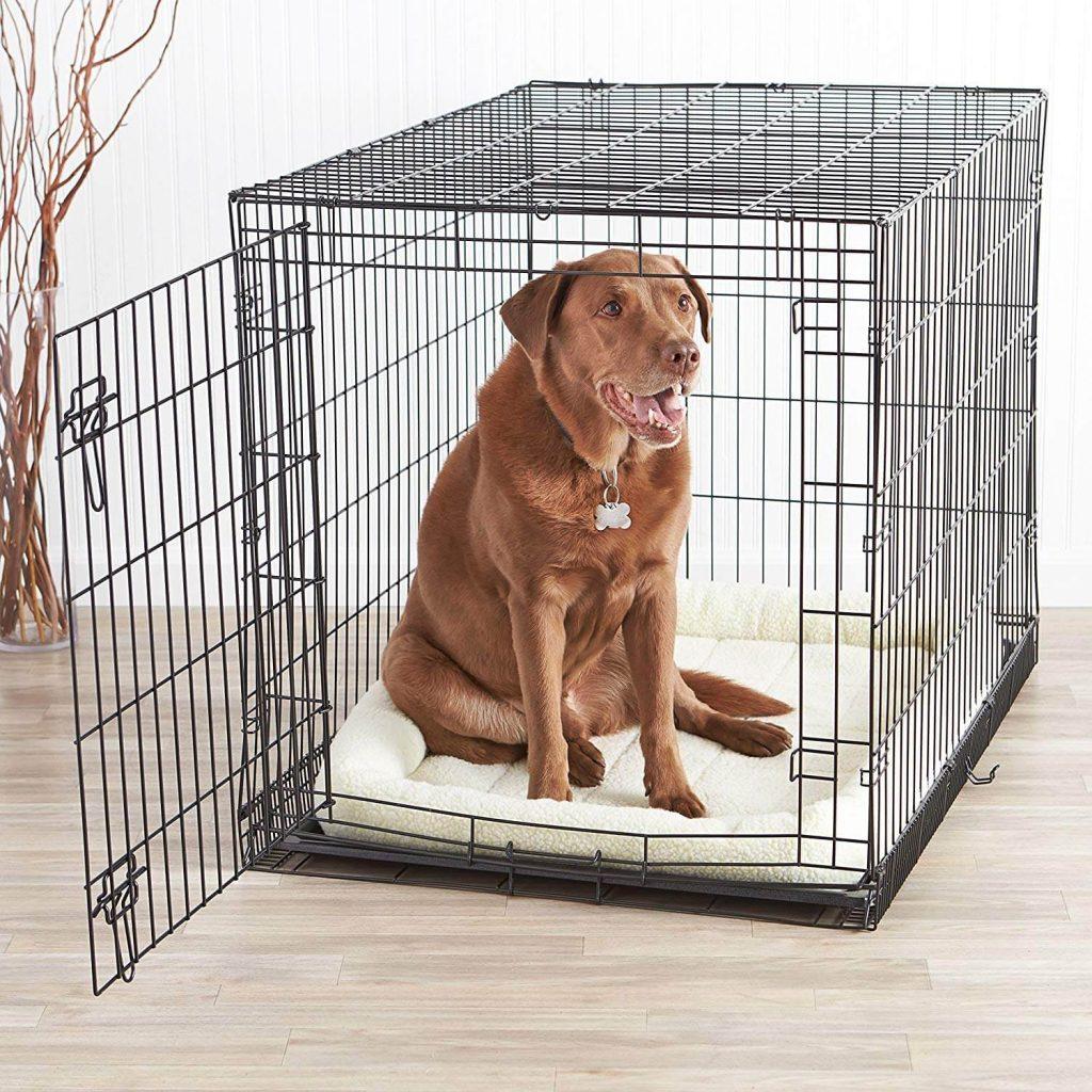 AmazonBasics Single Double Door Dog