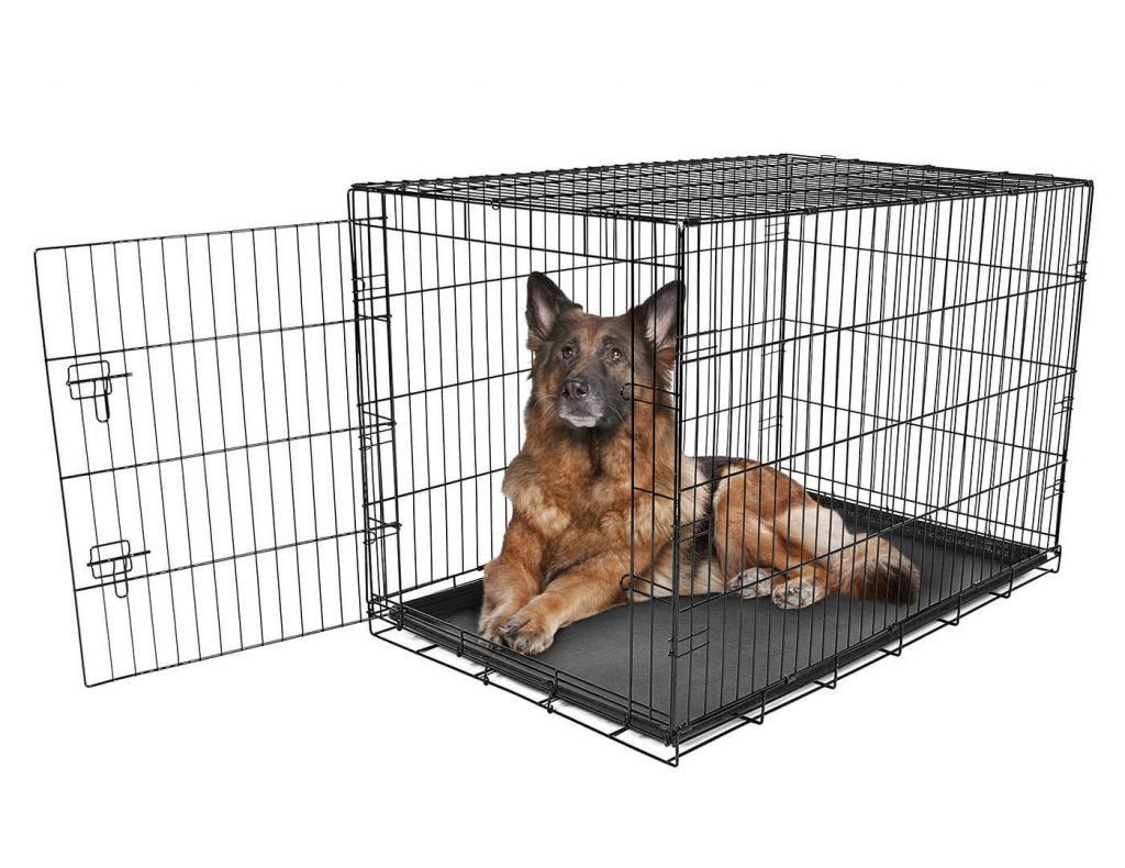 Calson Pet Products Secure and Foldable