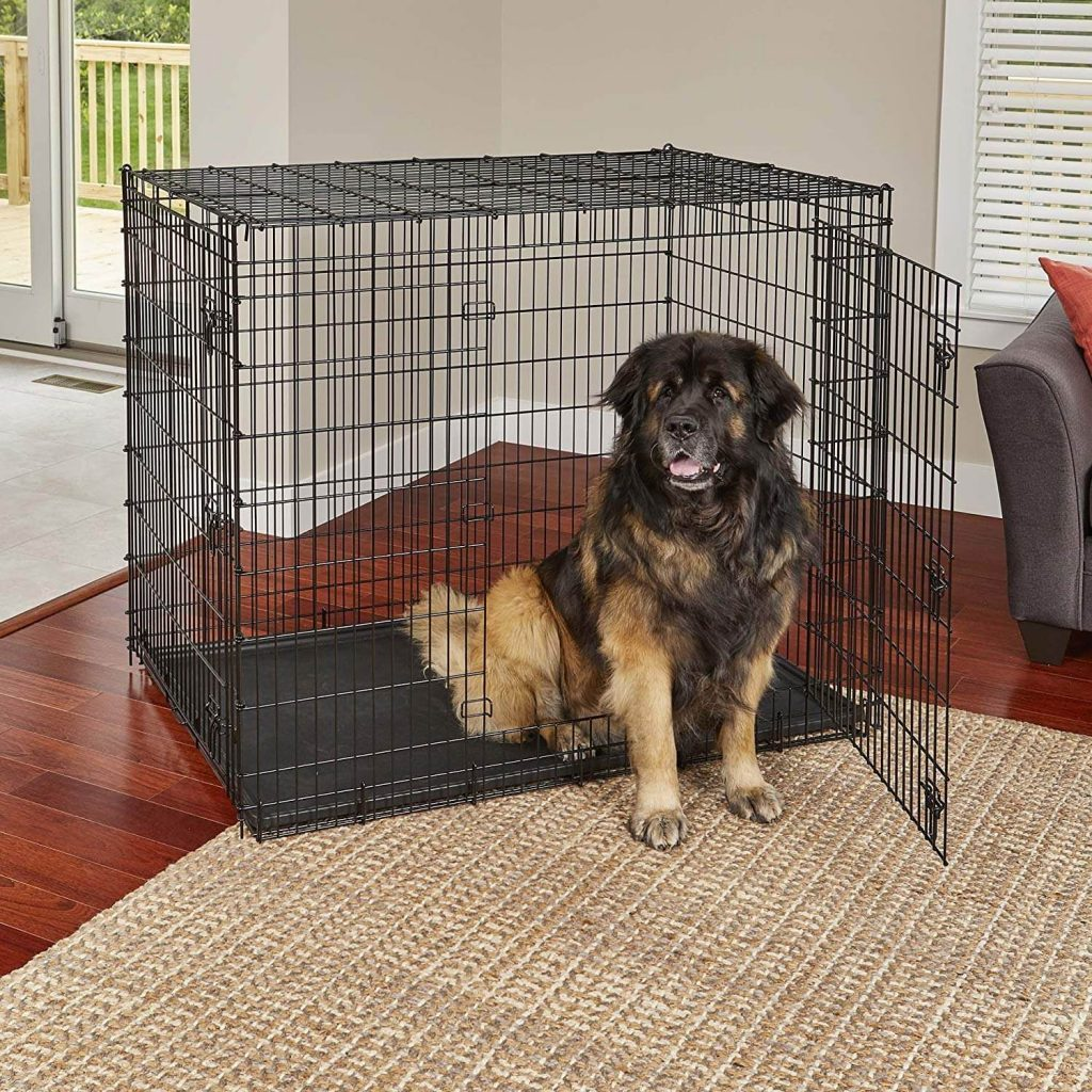 MidWest Homes for Pets XXL Dog
