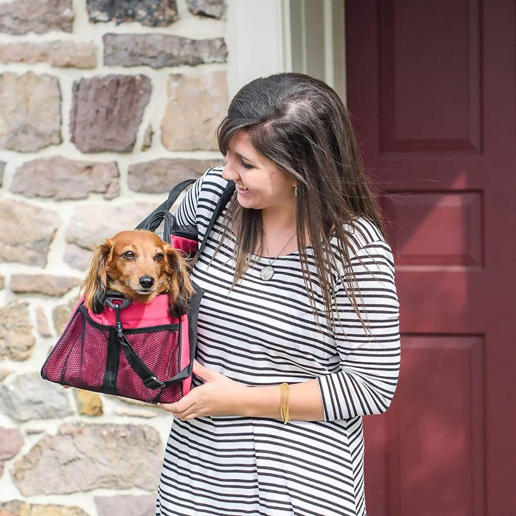 Gen7Pets Carry Me Carrier Red