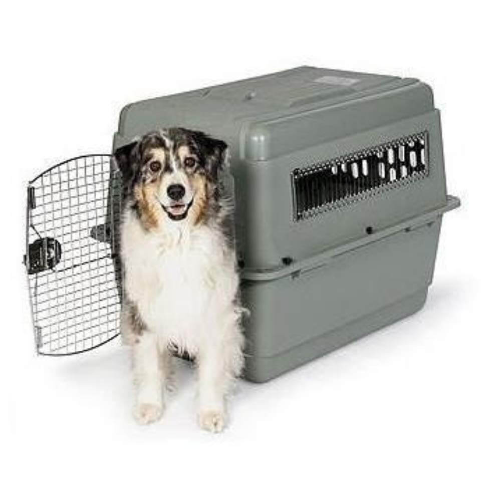 Petmate Sky Kennel Pet Carrier Dog