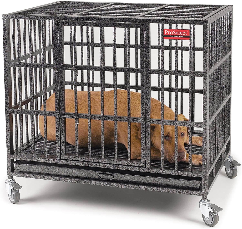 ProSelect Empire Dog Crate Medium
