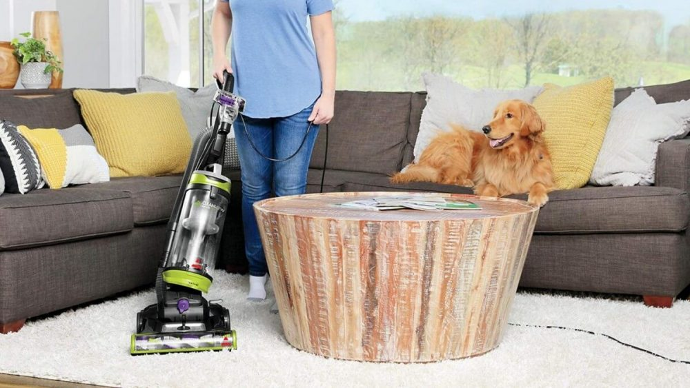 Dog with Bissell Vacuum