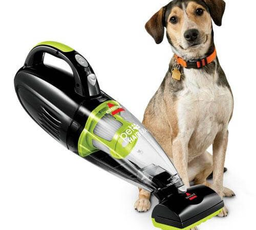 Dog with Handheld Vacuum