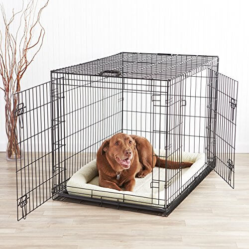 Labrador Dog Crate