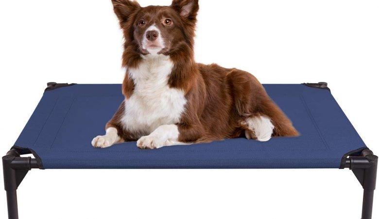 Dog Beds Archives Barkforce