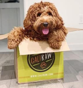 Cali Raw Dog in Box